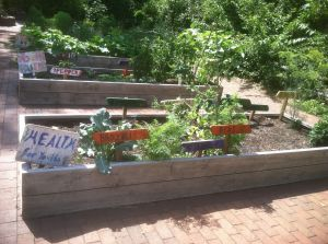 Colorful signs made by the gardeners personalize these vegetable plots.